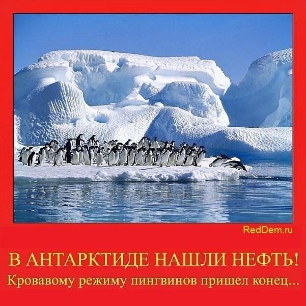 В Антарктиде нашли нефть