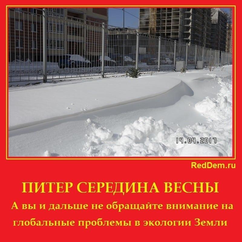 ПИТЕР СЕРЕДИНА ВЕСНЫ